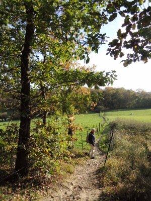 Promenade entre Andenne et Coutisse