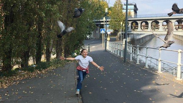 Anderlecht : le canal