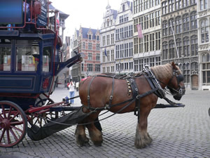 Visite de la ville d'Anvers