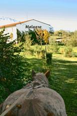 Fête d'automne à Malagne la Gallo Romaine