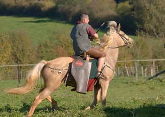 Démonstration d'équitation