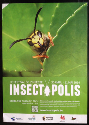 Insectopolis