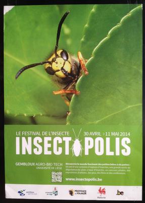 Insectopolis