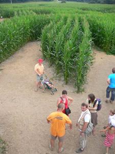Le labyrinthe de Barvaux en 2008