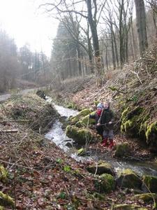 Le ruisseau de Biert