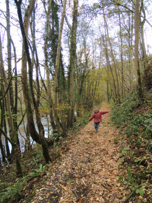 Promenade autour d'Anseremme
