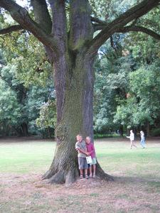 Arboretum de Monceau-sur-Sambre