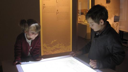 Museum des Sciences Naturelles : BiodiverCITY