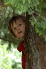 on peut se cacher dans les arbres