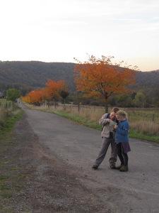 Promenade autour de Profondeville