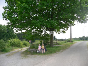 Promenade de Marsinne à Wanheriffe