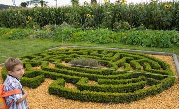 Reconstitution de petits labyrinthes